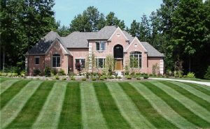 Grass Mowing in Linden, MI