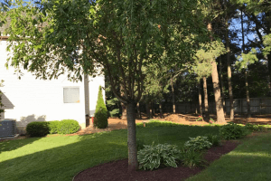 Landscaping in Holly, MI