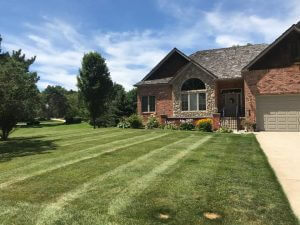 Lawn Re-seeding in Fenton, MI