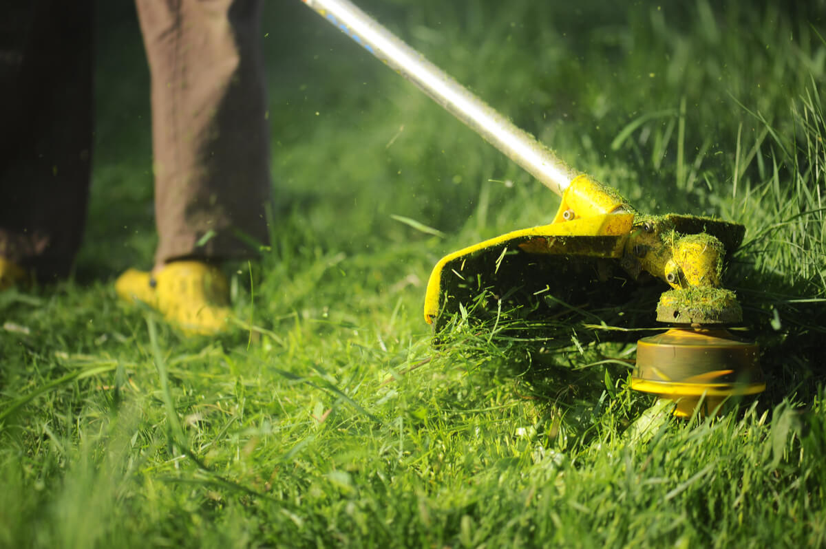 Lawn Trimming in Fenton and Linden, MI
